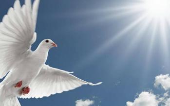 Lucrarea Duhului Sfânt manifestată în viață